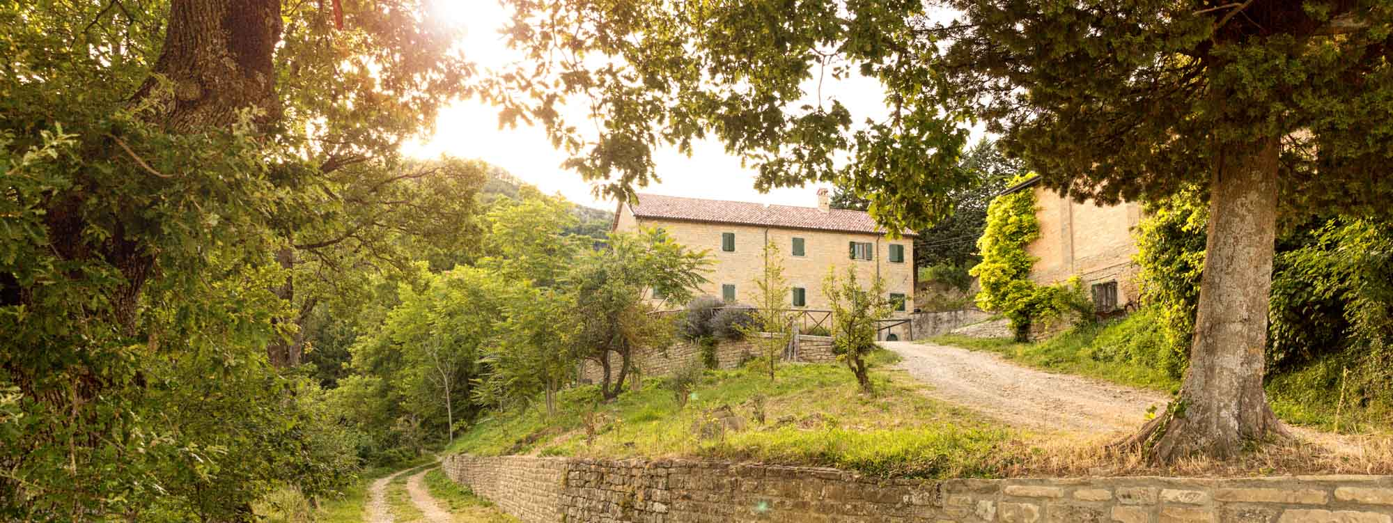 AGRITURISMO_BED_AND_BREAKFAST_BB_PREMILCUORE_PERNOTTO_CAVALLO1